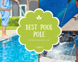 Best Pool Pole