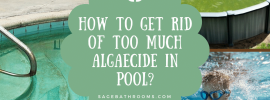 How To Get Rid Of Too Much Algaecide In Pool?