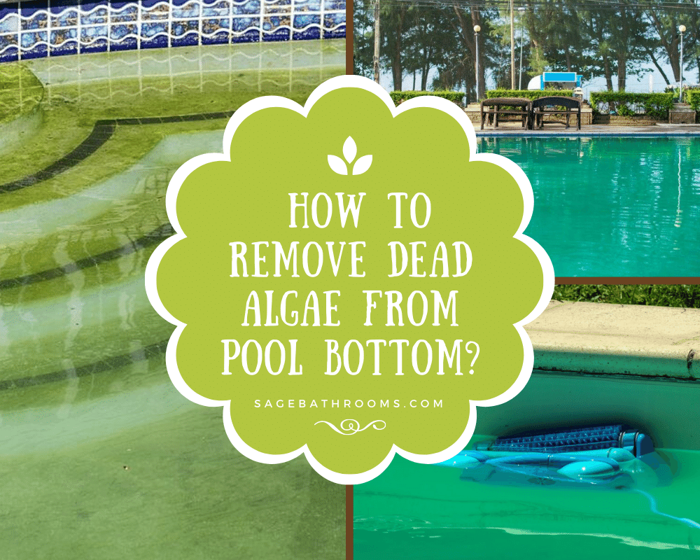 How To Remove Dead Algae From Pool Bottom?