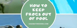 How To Keep Frogs Out Of Pool