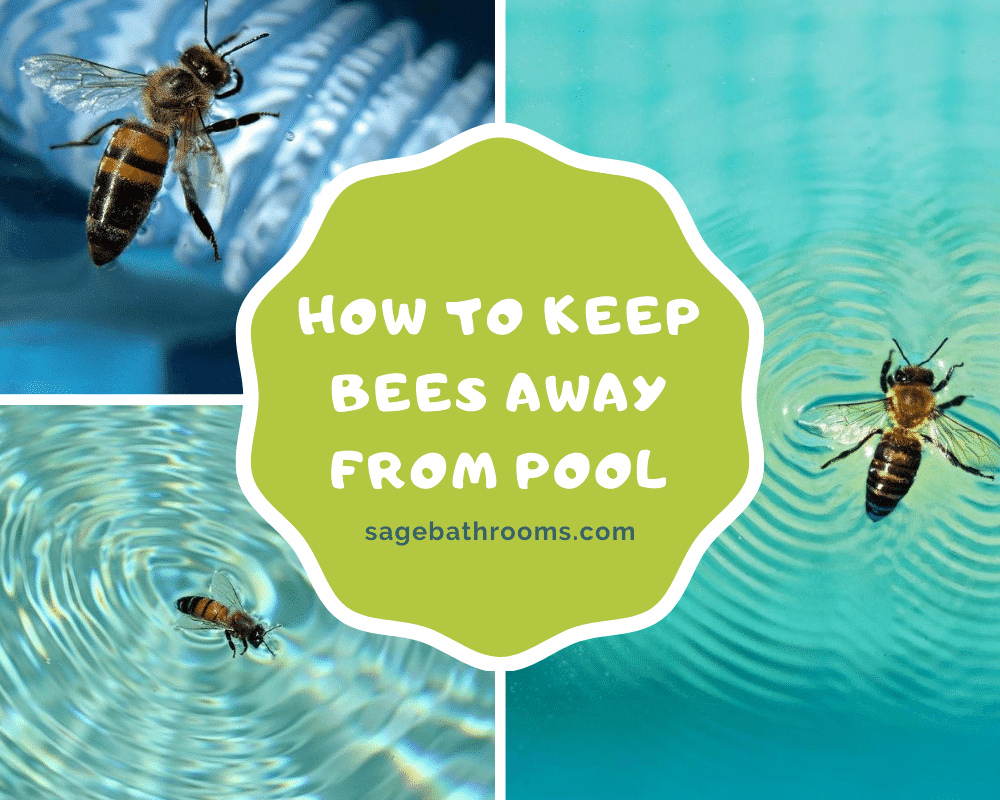 How To Keep Bees Away From Pool