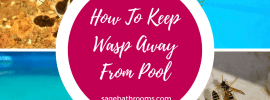 How To Keep Wasp Away From Pool